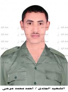 احمد محمد مرعى_كوم امبو