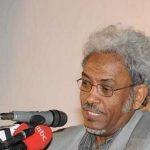 د.أمين حسن عمر يكتب : المسكوت عنه… في العلاقات السودانية المصرية 1